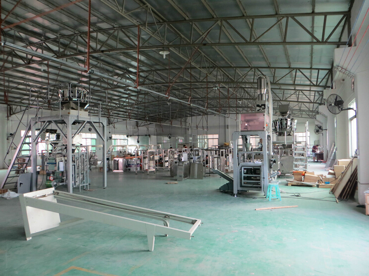 plant for manufacturing the machine packing.jpg